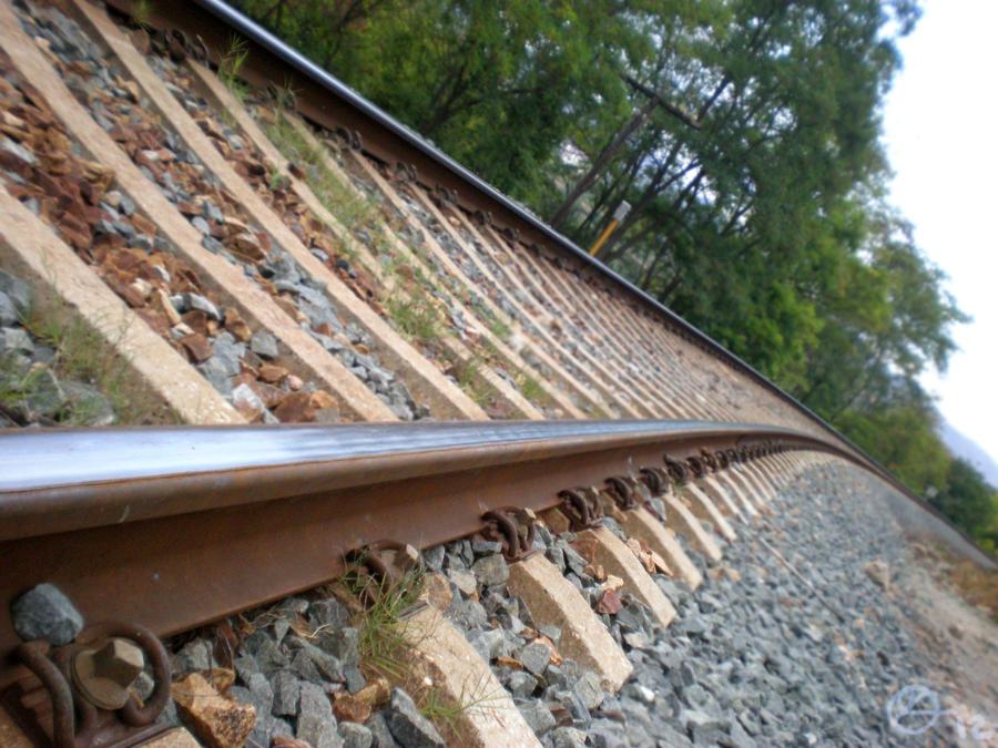 No trains by 402ShionS3