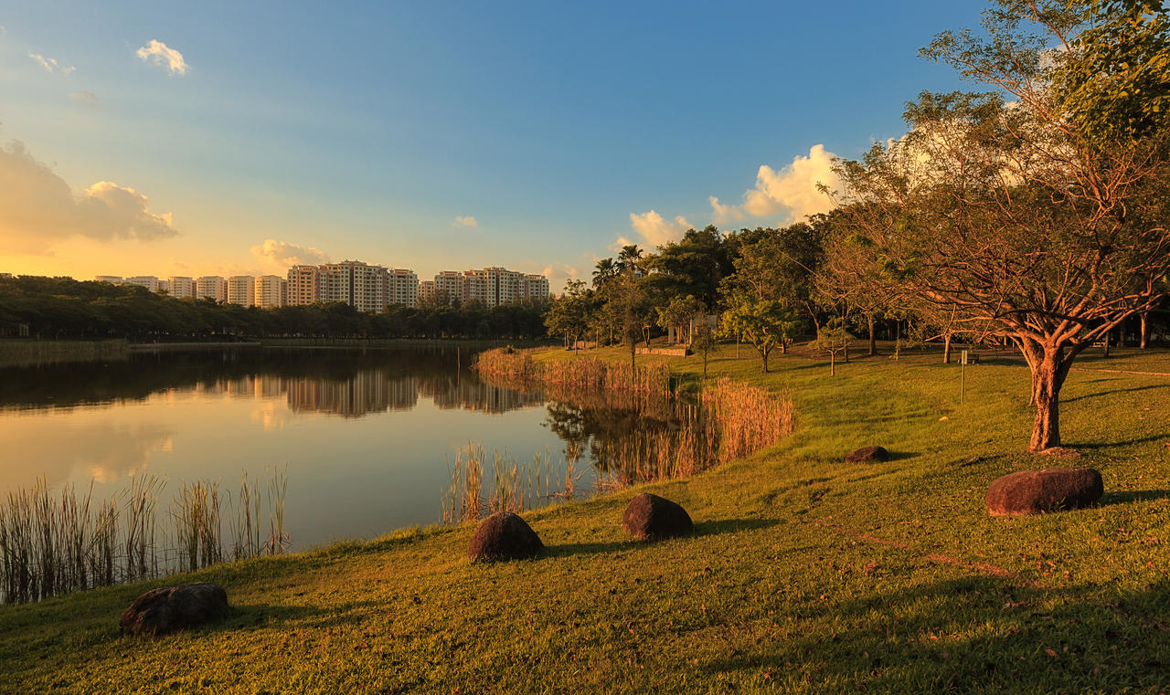 Punggol Park Amber Light by Draken413o