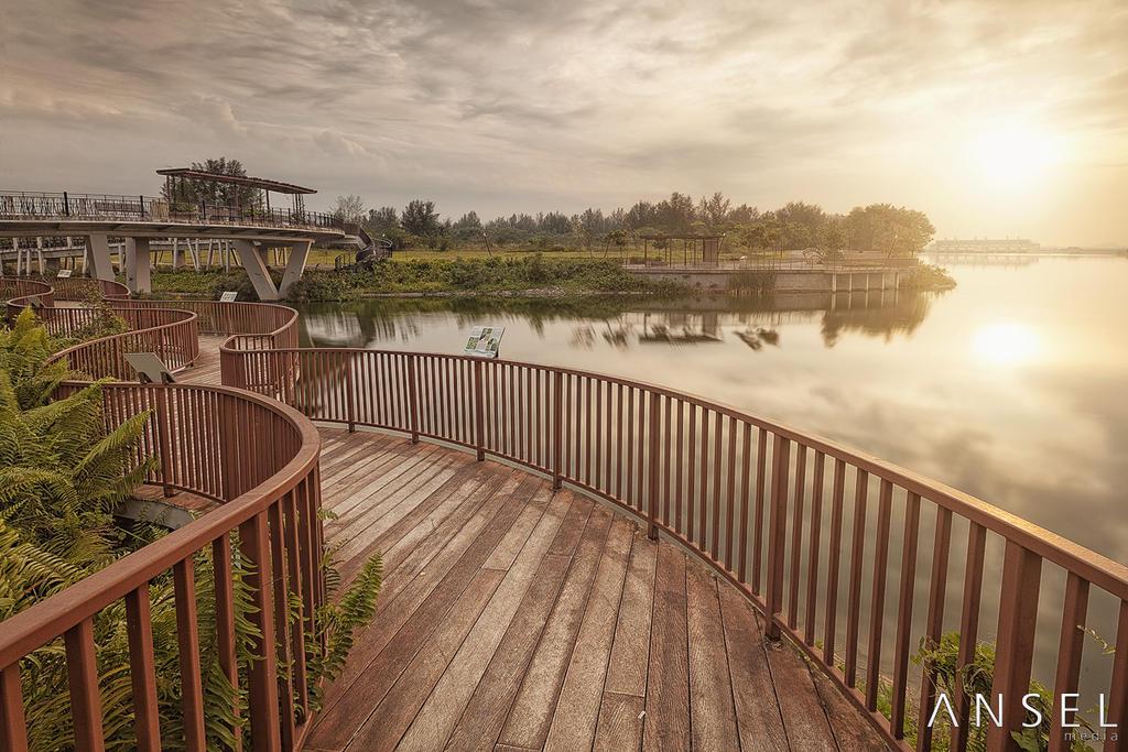 Halus Wetlands by Draken413o