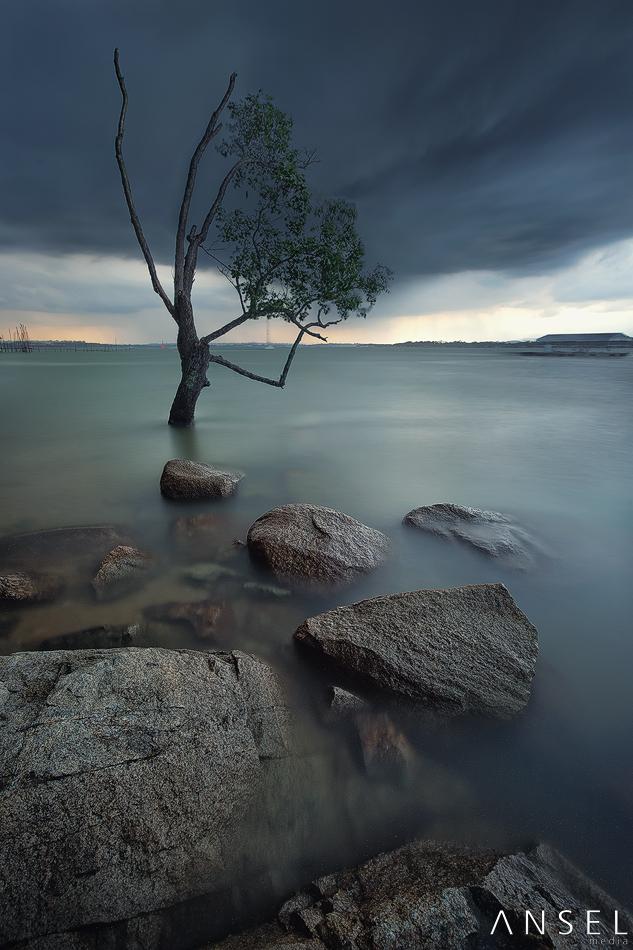 StormFast by Draken413o