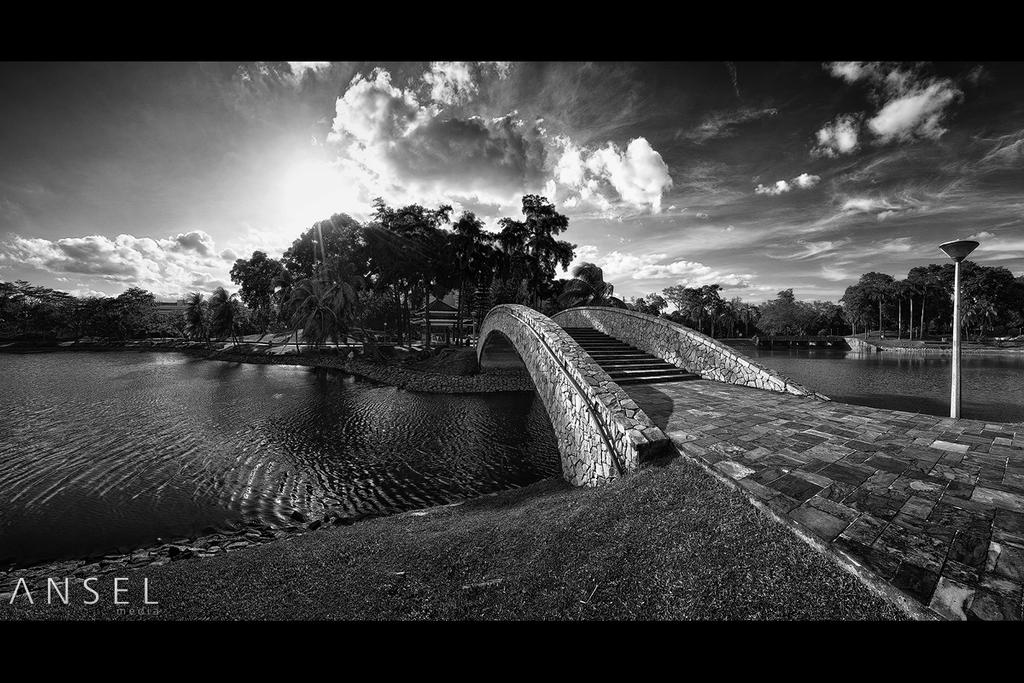 Woodlands Garden by Draken413o