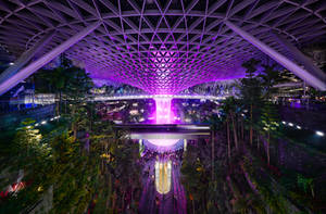 Purple Rain by Draken413o