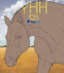 YHH | YCH | #2 | [CLOSED] by CaveWithFire