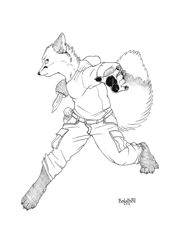 Swift, Like a Fox by KalahariFox