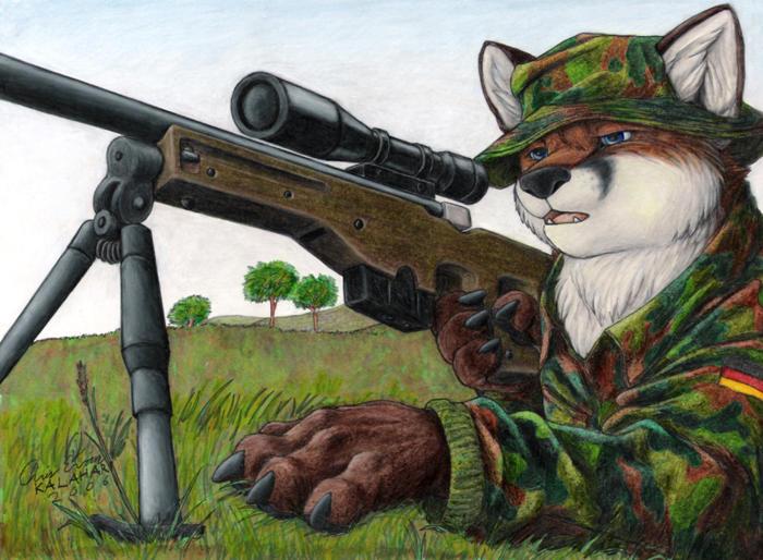 Cual es tu especie - Página 3 Sniper_in_Kosovo_by_KalahariFox