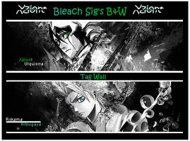Bleach Mini Tag Wall B and W