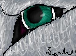 Wolf eye by saphariadragon