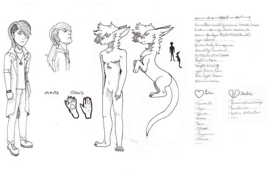 Reference Sheet(Trad) by RinDark801