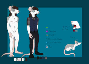 Reference sheet complete by RinDark801