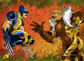 Wolverine Vs. Sabretooth by Jey2K