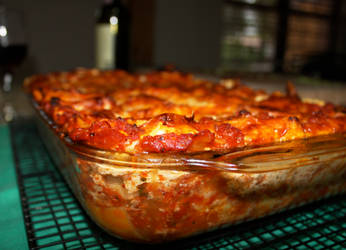 lasagna by agent229