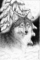 Wolf Moon by celestriastars