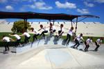 Skatemeet 3: Golder Sequence 1