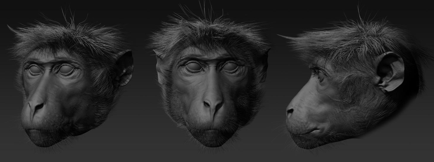 Toque Macaque sculpt by RedHeretic