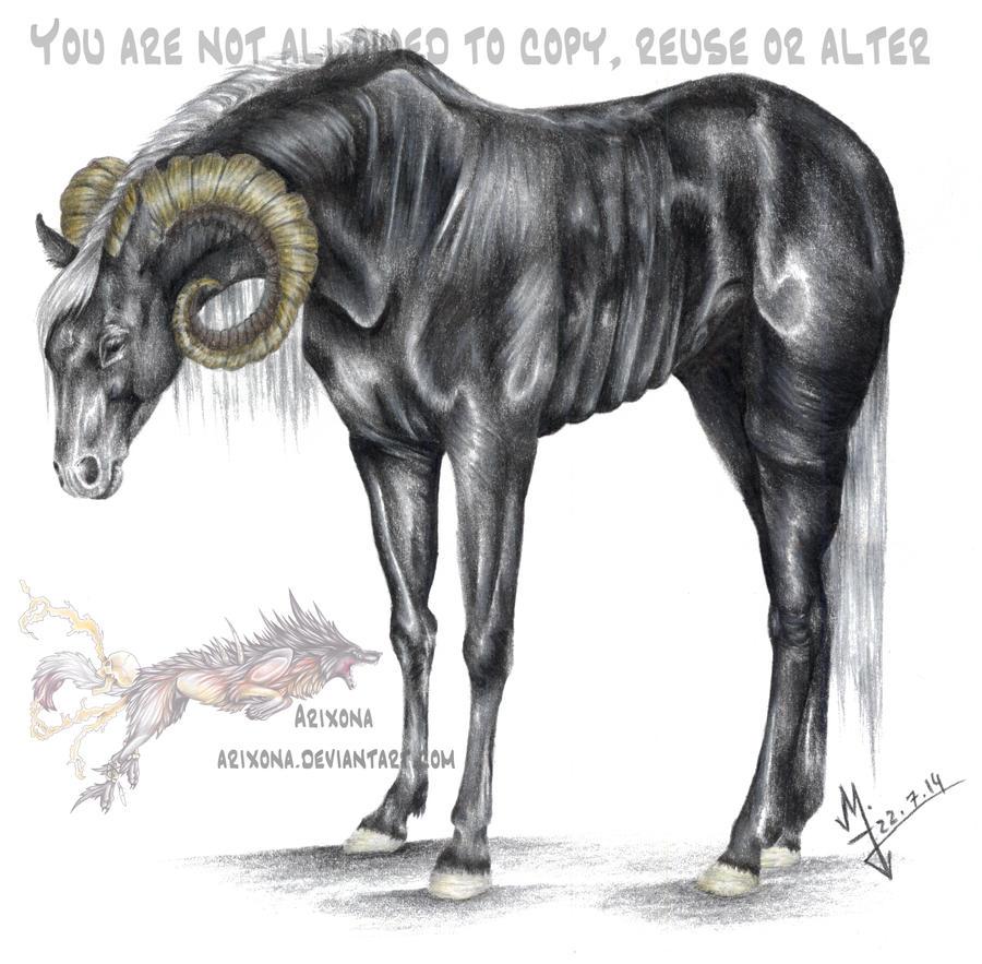 No name creature by Arixona