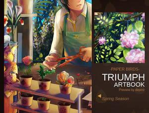 Triumph artbook-preview--paperbirds