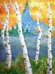 Watercolour Birches by GlowingMember