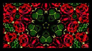 the synthetic awakening - Kaleidorose