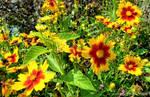 the synthetic awakening - Flower Garden