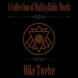 A Collection of Multisyllabic Words Album Cover