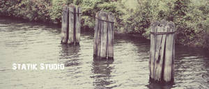 Canal Pilings