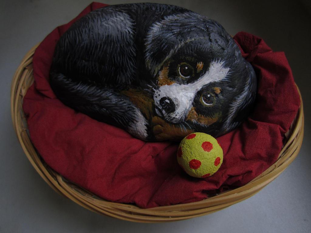 Hund im Koerbchen
