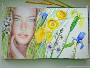 Skethbook 11