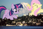 Giant Twilight and Fluttershy in Tacoma, WA