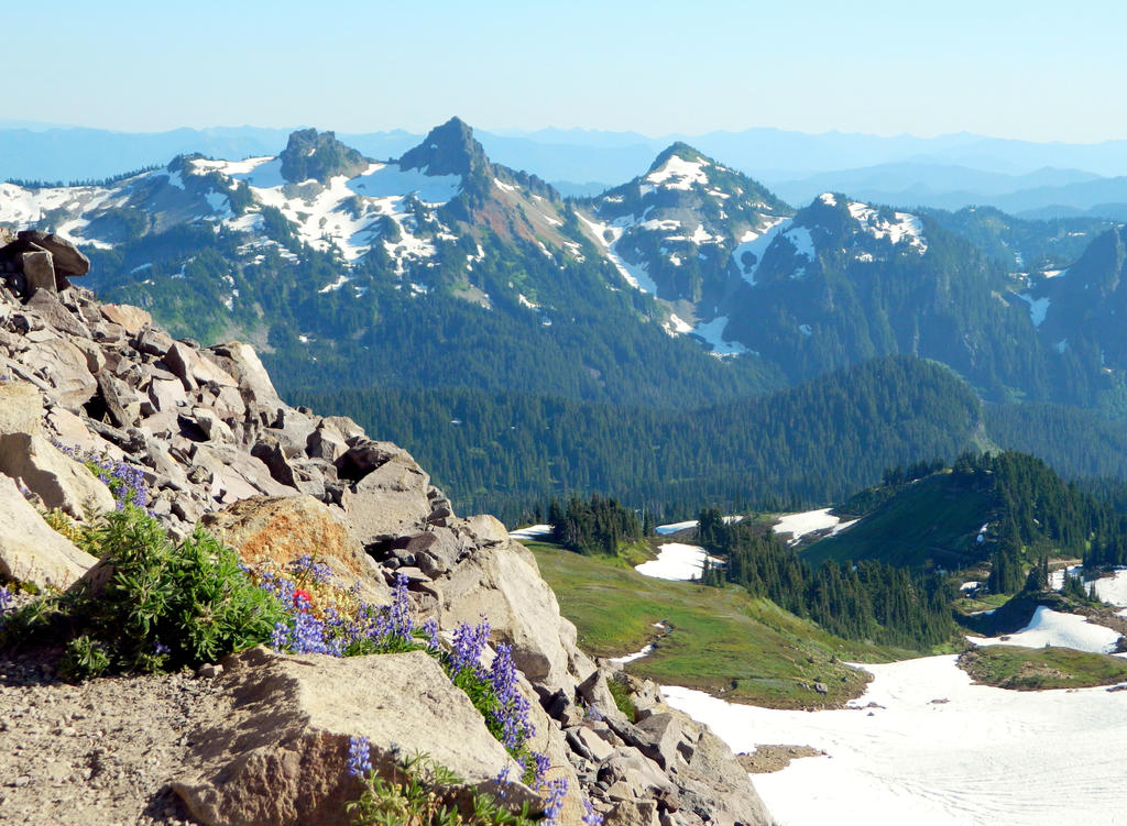 Oregon hikers view topic skyline trail at mount for Indoor gardening rainier oregon