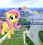 Giant Fluttershy and Derpy Visit Louisville