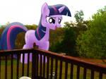Twilight's Mischievous Visit