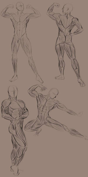 02.06.2019 Muscle Practice