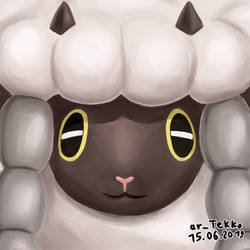 15.06.2019 Wooloo Stare