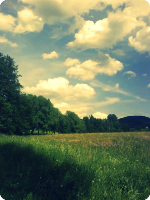 Landscape. by MrsHighway