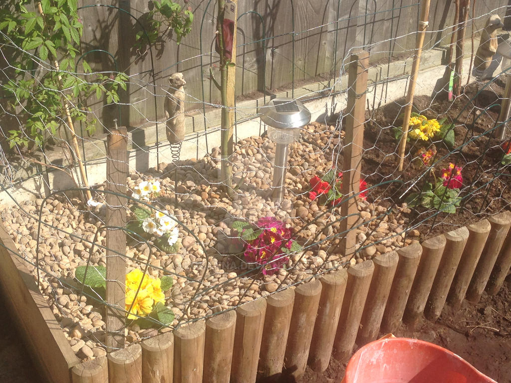 my little garden by loxanna