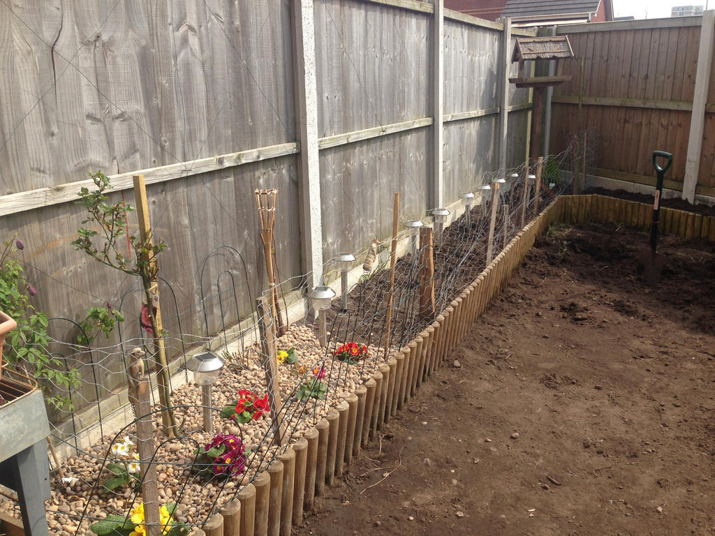 my garden at the beginning by loxanna