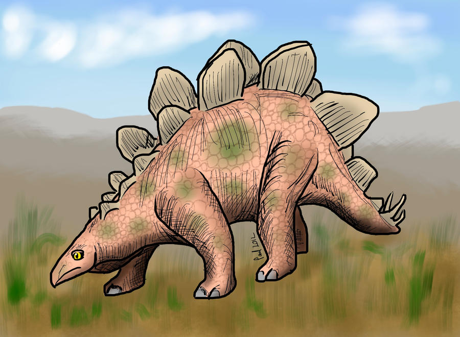 Stegosaurus by HairyDalek