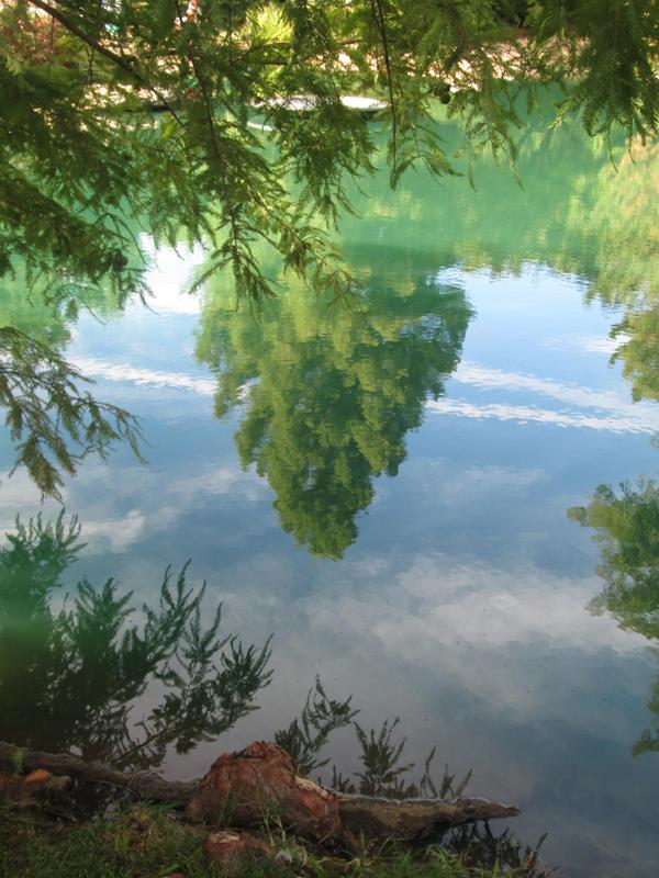 Reflection by UchihaMorwen