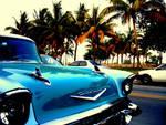 Miami Gangster