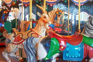 Santa Monica Pier Carousel 06