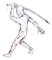 cloth Ninja