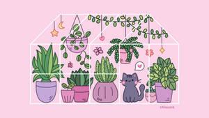 October 25   Greenhouse