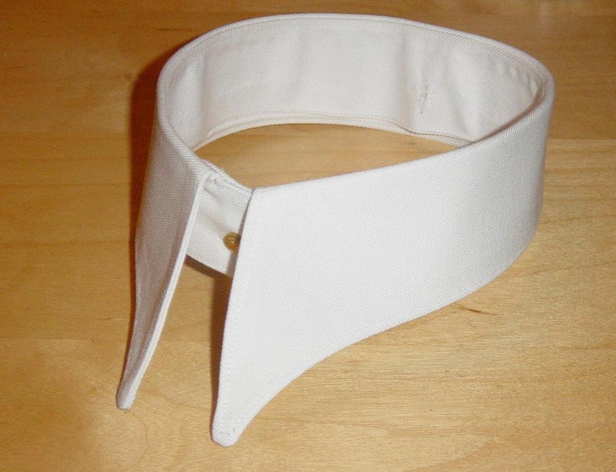 Detachable Collar by hawkthrower