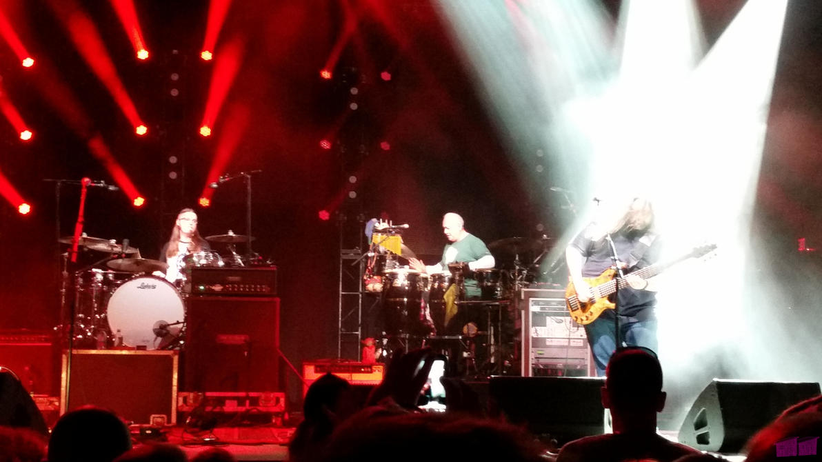 Widespread Panic 4 by twosheds1