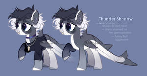 [redesign] thunder shadow