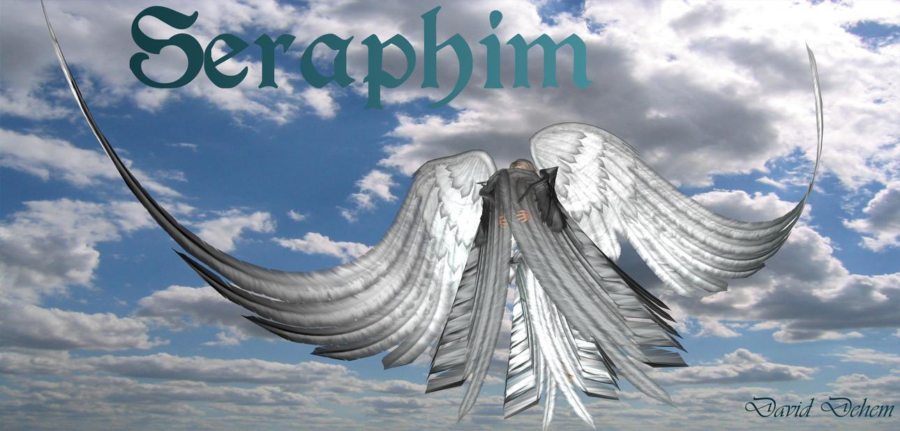 seraphim - seraphin by SquallLion1 on DeviantArt