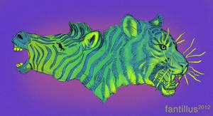 Zebra and Tiger