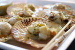 Grilled shell with mozzarella cheese