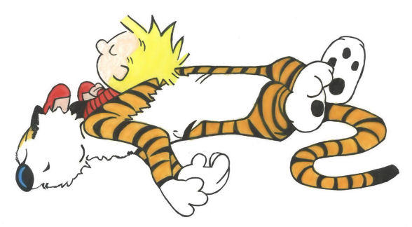 Calvin and Hobbes by scarfaze