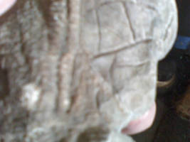 My Altar Photos:  The Goddess3 by Black-Feather